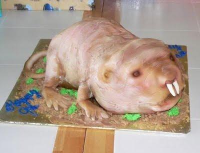 Kathy-lw-naked mole rat