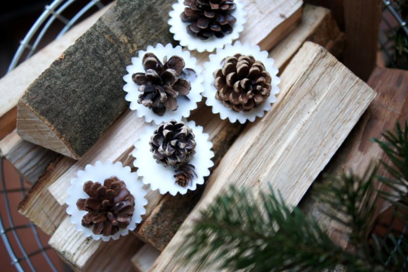 DIY Kaminanzünder aus Tannenzapfen selbermachen