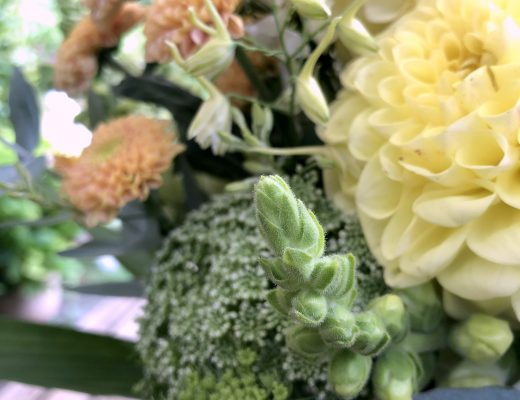 Dienstags-Links 8 Blumen